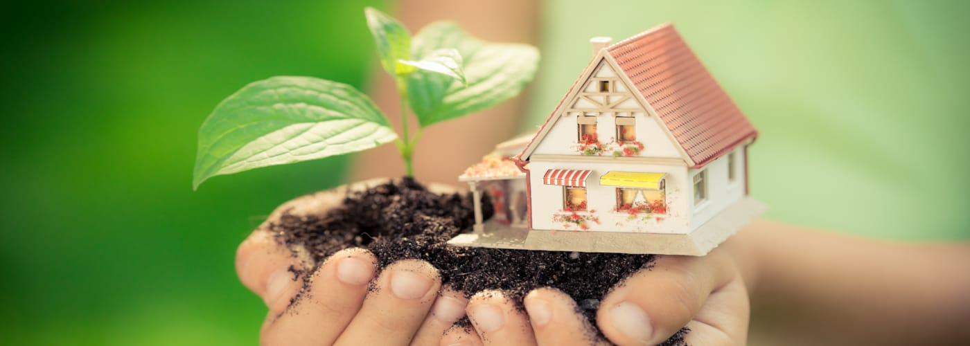 6 Eco-Friendly Ways to Relocate
